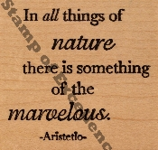Marvelous Nature